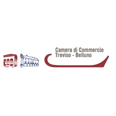 Camera commercio Treviso Belluno